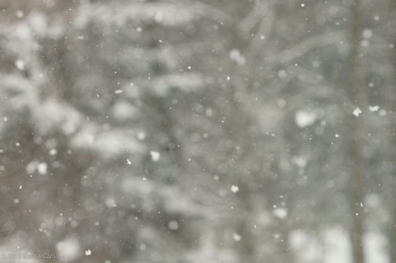 kc-Snow